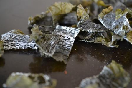 kelpcrisps