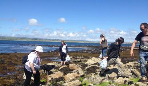 seaweed pickers